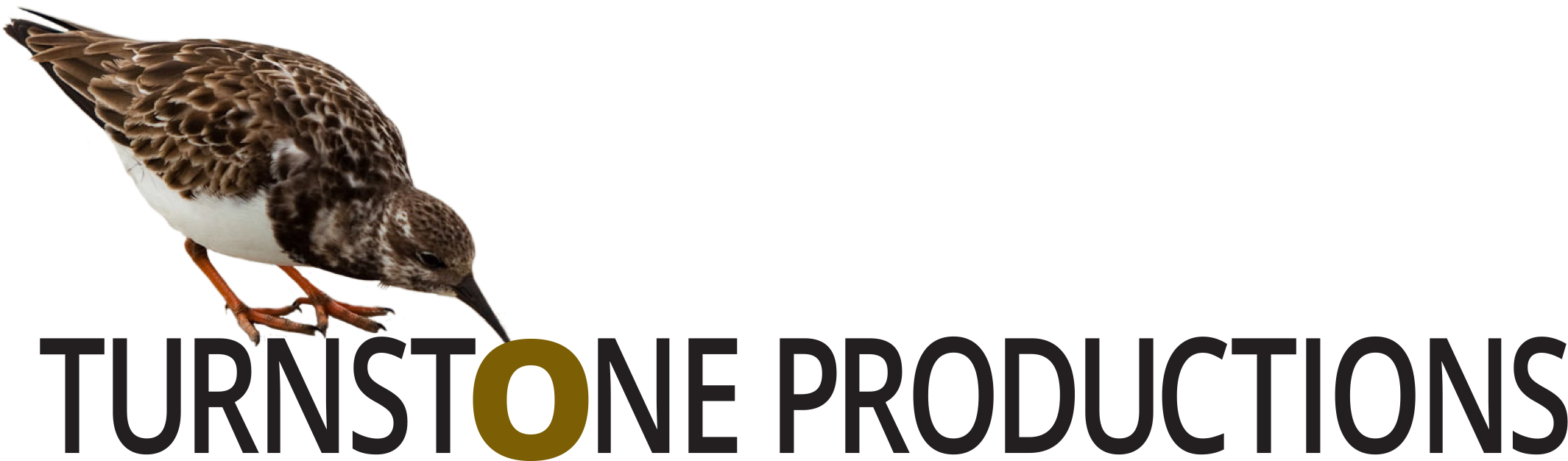 Turnstone Productions